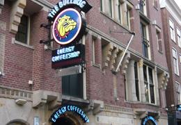 List of hotels in amsterdam discounts from 50 off for Bulldog hotel amsterdam